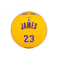 Mini Balón Lebron James NBA Player