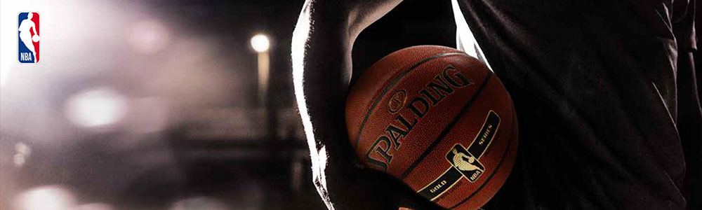 balon nba performance spalding